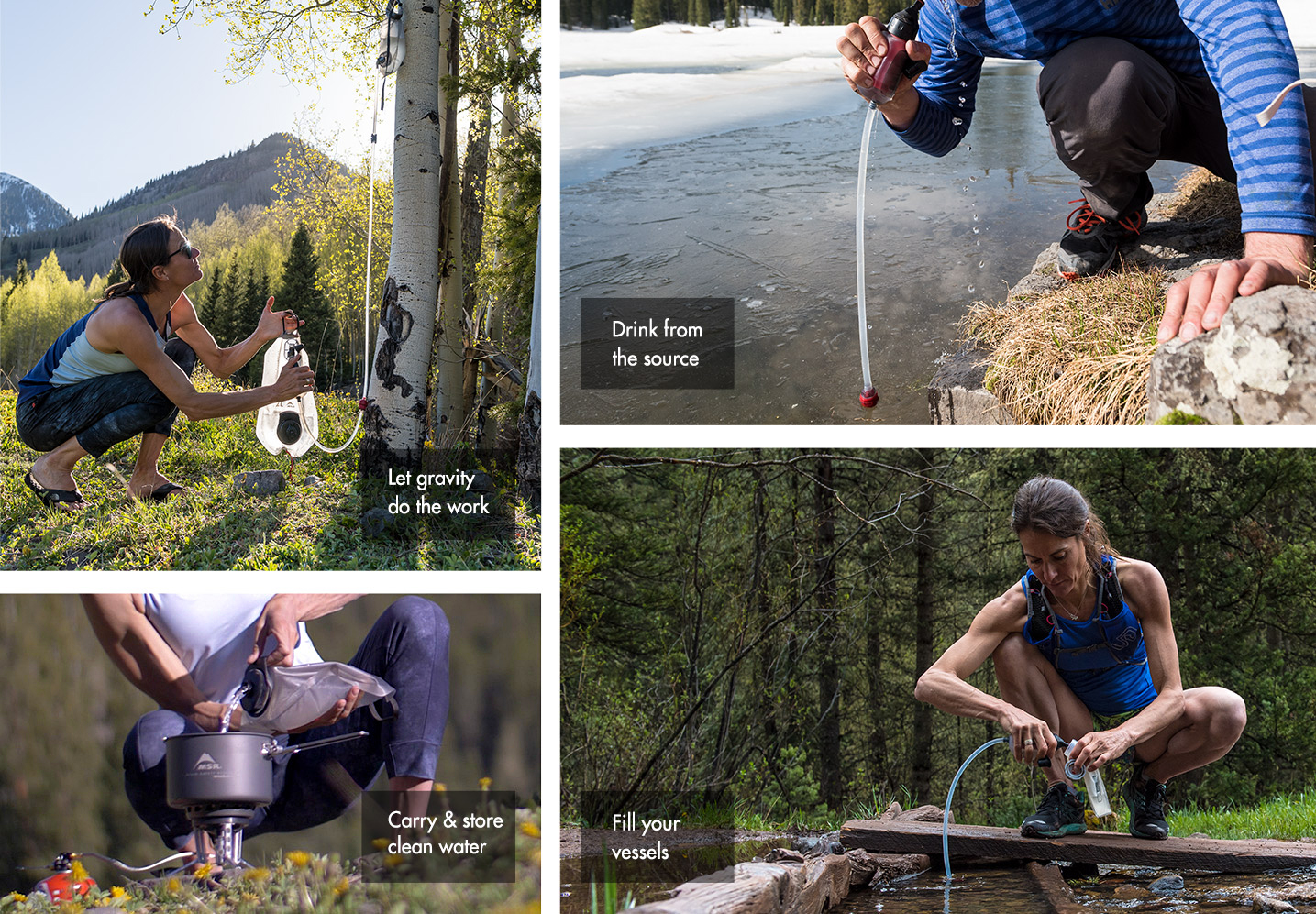 trailbase collage desktop version