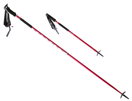 Flight 2 Adjustable Winter Poles